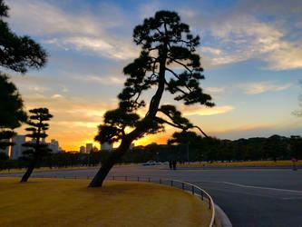 Tokyo Sunset by Sorren-Chan