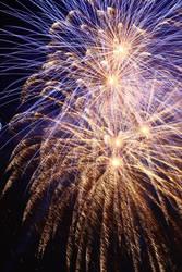 Battersea Park Fireworks by FloWithTheMojo