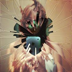 Looking in the mirror by Ramlyn