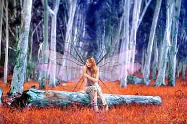 The girl in the tree by Ramlyn