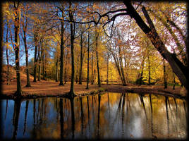 Autumn reflections by pagan-live-style