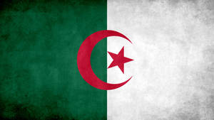 Algeria Grunge Flag by SyNDiKaTa-NP