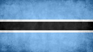 Botswana Grunge Flag by SyNDiKaTa-NP