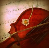 :melody:. by neslihans