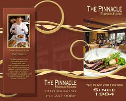 Pinnacle Brochure by backflip540