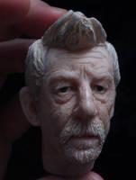 The War Doctor by frasierdalek