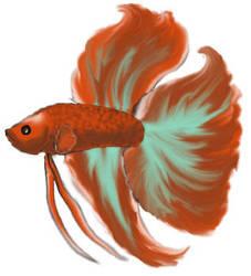 Betta Fish by MemphisTale
