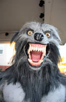 Werewolf Costume 2010-4 by CReeves76
