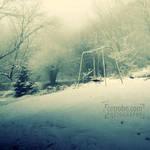 THE WINTER SWING by cetrobo