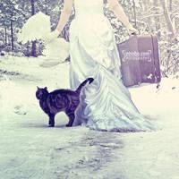 GO SNOW by cetrobo