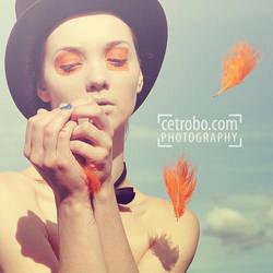 WIND by cetrobo