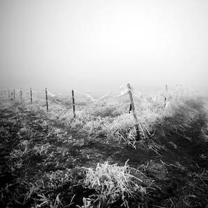 white frontier by selimselimoglu