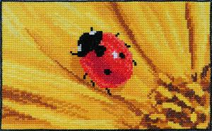 Cute ladybug on bright yellow flower cross stitch by YANKA-arts-n-crafts