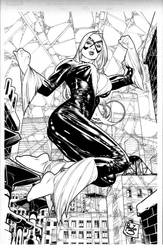 Black Cat comission by PauloSiqueira