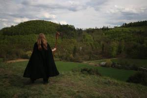 STOCK the wizard II by MyladyTane