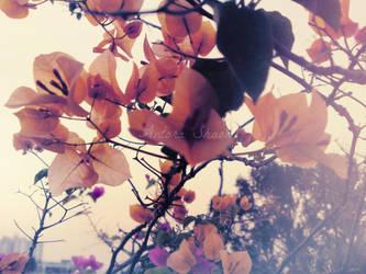 Flower Vines by ravens-core
