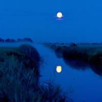 moonlight serenade by Dieffi