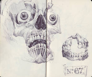 Skull with Teeth by SketchbookNoir