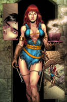 RED SONJA BLUE PAGE 14 by wgpencil