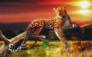Jaguar by TeeKeeuS87