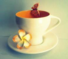 orange and white by seeratrizvi