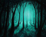 Deep Woods Arrival by crazycolleeny