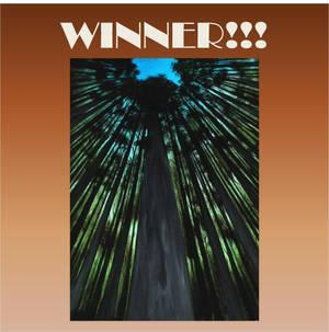 Raffle March Winner by crazycolleeny