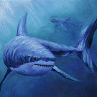 Blue Shark by crazycolleeny