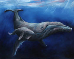Humpback Whales by crazycolleeny