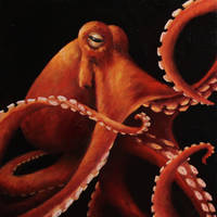 Orange Tentacles by crazycolleeny