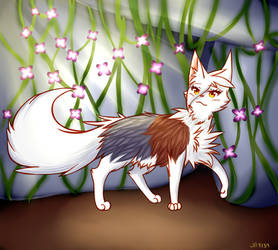 Spottedleaf #SSSContest by Jade-Hearts-Art