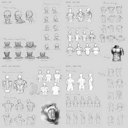 Sketchdump July 2015 - 01 [anatomy] by DamaiMikaz
