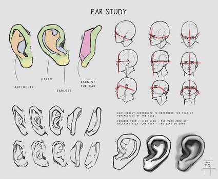 Sketchdump April 2018 [Ears] by DamaiMikaz