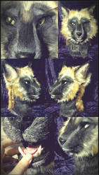 Cinder Cross Fox -- For Sale by SBGothik