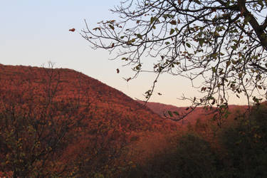 Red hill by Lola22