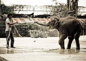 Impressions of Thailand I by photogenic-art