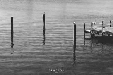 Florida XII by photogenic-art