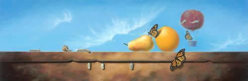 Iva Mae's Monarch's by LindaRHerzog
