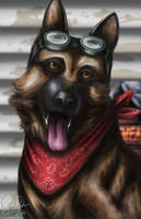 Fallout Portraits - Dogmeat by OliverDemers