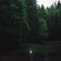 Natten ryster by Julieoftheworldtree