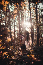 Pagan Tales by Julieoftheworldtree