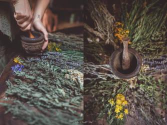 Le plaidoyer pour l'herboriste by Julieoftheworldtree
