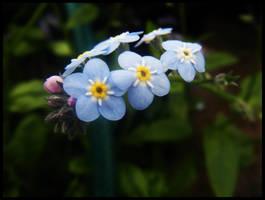 Blue. by lightsided-angel