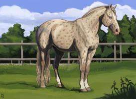 Charisma by PonyCool42