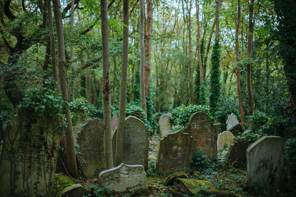 Graveyard by earthly-muse