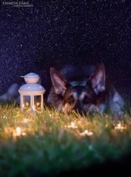 Bedtime story by Delariz