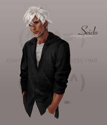 Commission - Seido by u-ness