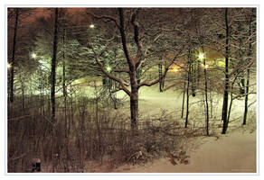 Winter Night by Pajunen