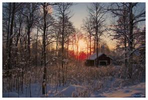 December by Pajunen