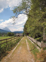Summer day in Seefeld by Pajunen